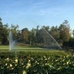 Acquafert irrigazione campi da golf Modena Golf e Country Club (7)