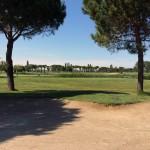 Adriatic Golf Club di Cervia (4)