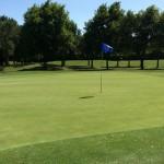 Adriatic Golf Club di Cervia (6)